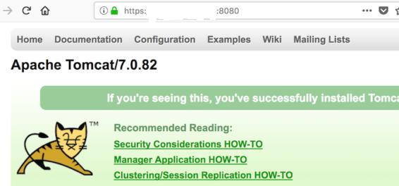 Как реализовать защиту по SSL в Apache Tomcat👨⚕️