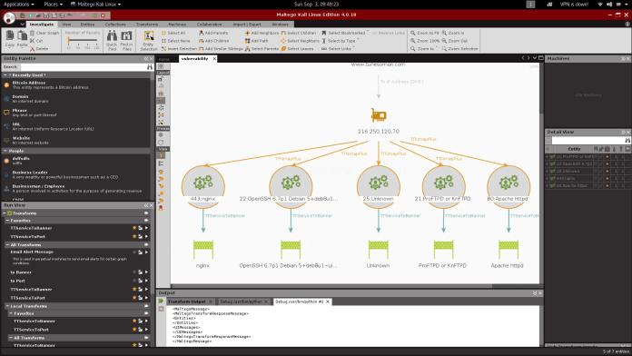 Выполнение сканирования уязвимостей в вашей сети с помощью Maltego