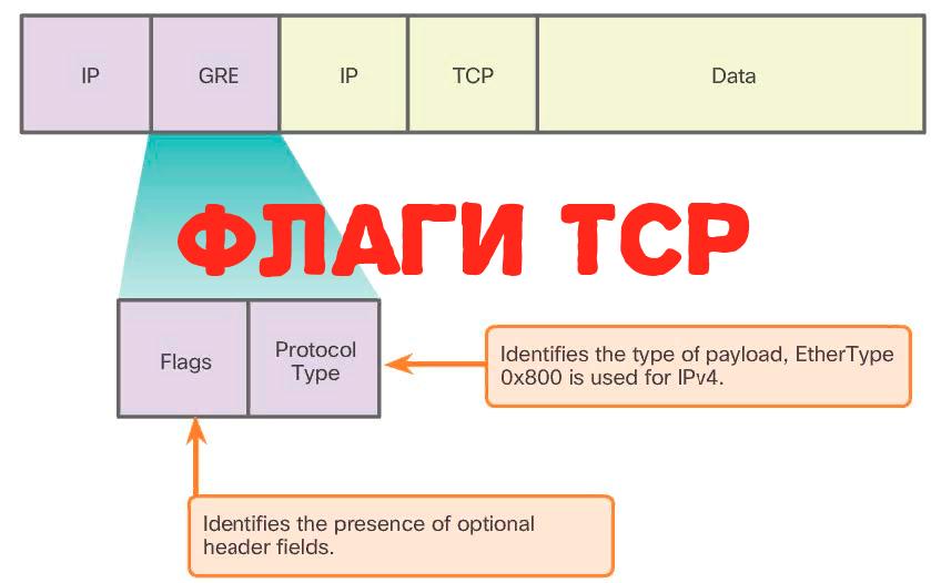 ‼️ Как запомнить все флаги TCP