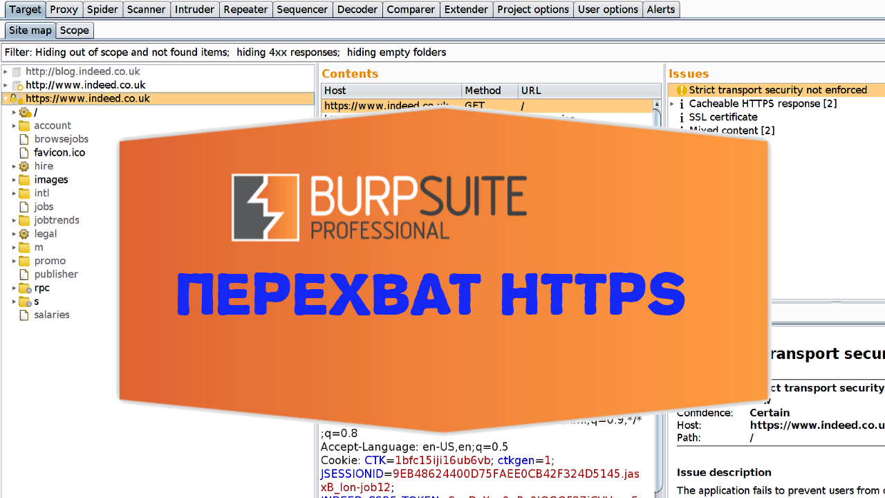 ☂ Перехват HTTPS-трафика с помощью Burp Suite