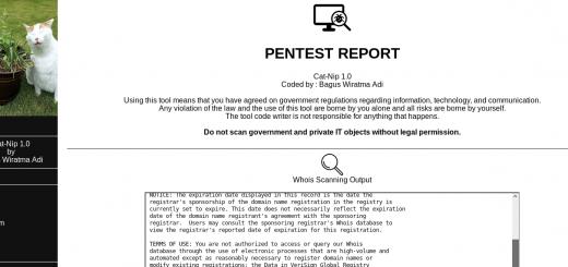🔅 catnip: автоматизированный базовый инструмент пентеста — разработанный для Kali Linux