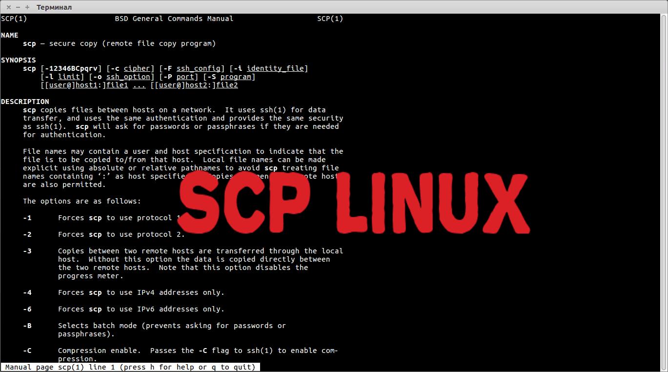 💴 Как использовать команду scp для безопасной передачи файлов с примерами