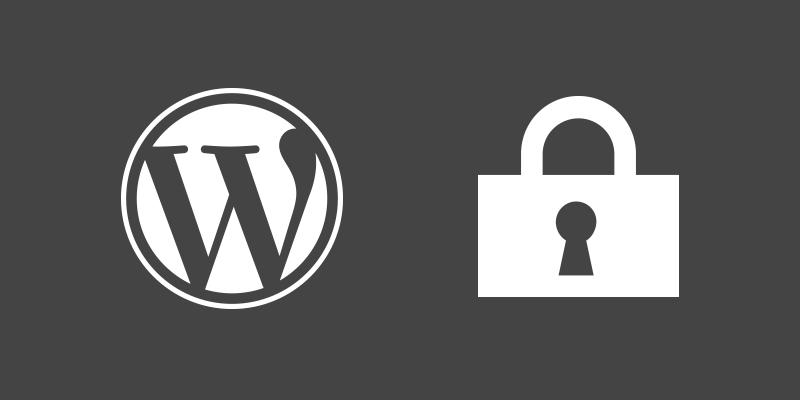 🌍 13 лучших практик безопасности для защиты вашего сайта WordPress