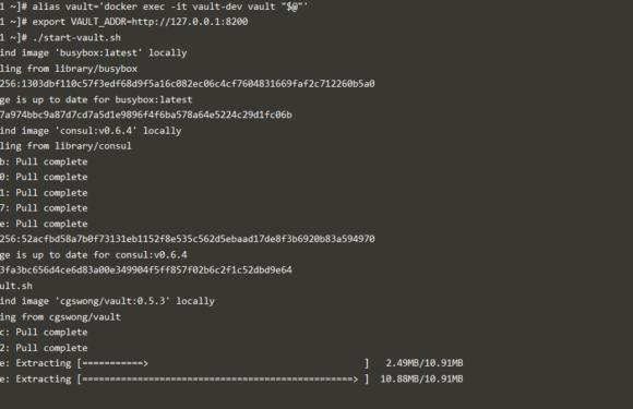 🔒 Как читать секреты Vault из контейнеров Docker