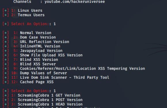 ✗  XSS-Finder: сверхмощный и усовершенствованный сканер межсайтового скриптинга