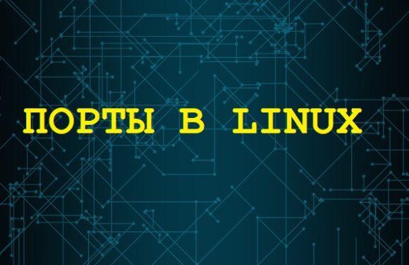 🐧 Как смотреть порты TCP и UDP в режиме реального времени