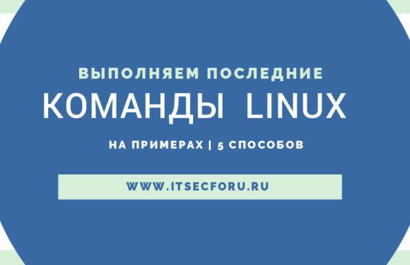 🐧  Различные способы повторить вашу последнюю команду в Linux