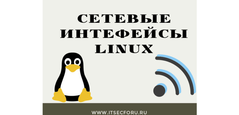 🖧  Как проверить доступные сетевые интерфейсы, связанные IP-адреса, MAC-адреса и скорость интерфейса на Linux