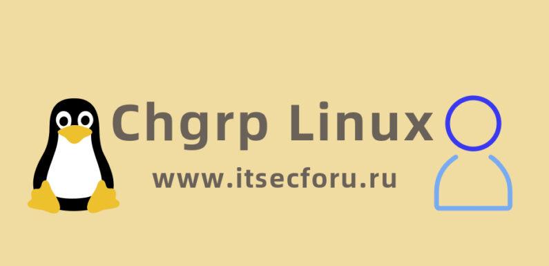 🐧 Как управлять группами на Linux с помощью команды Chgrp