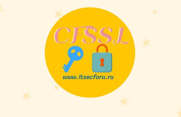 🔐 Как установить CloudFlare CFSSL на Linux | macOS