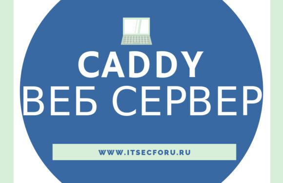 🌐 Как захостить сайт с HTTPS, используя Caddy на Linux