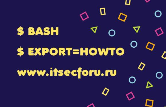 🐧 Разница между определением переменных Bash с export и без