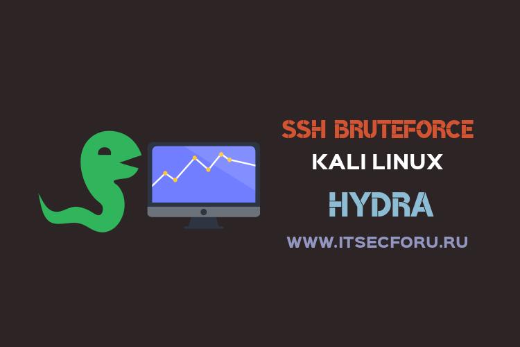🐍 Брутим SSH удаленного сервера