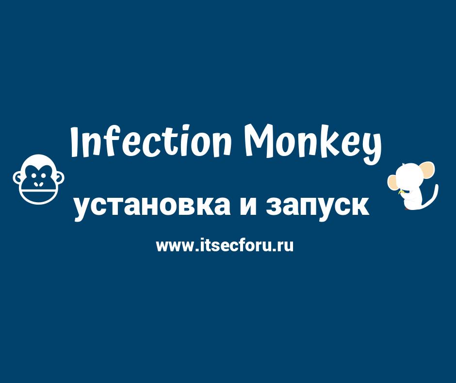 🐒 Как установить Infection Monkey для моделирования взлома и атак в вашей сети