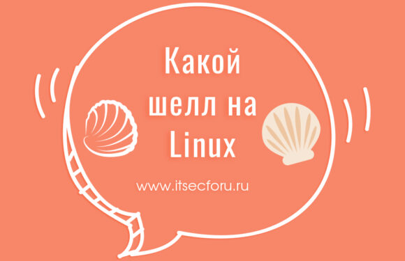 🐚 Как проверить, какую оболочку вы используете на Linux