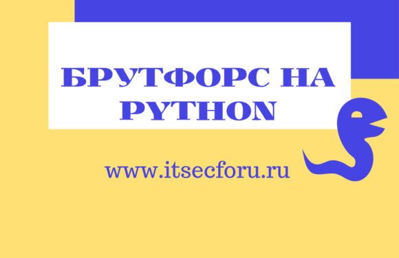 🐍 Инструкция и скрипт на Python по брутфорсу FTP