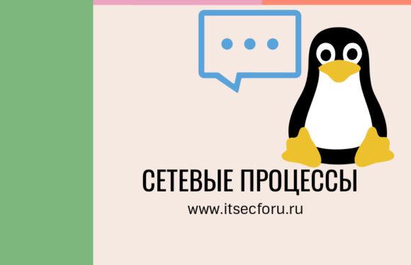 🖧  Как отслеживать сетевую активность в системе Linux