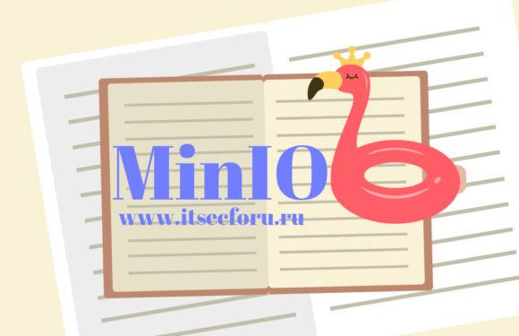 🦩 Изучаем MinIO – автономное хранилище объектов с высокой производительностью, совместимое с S3