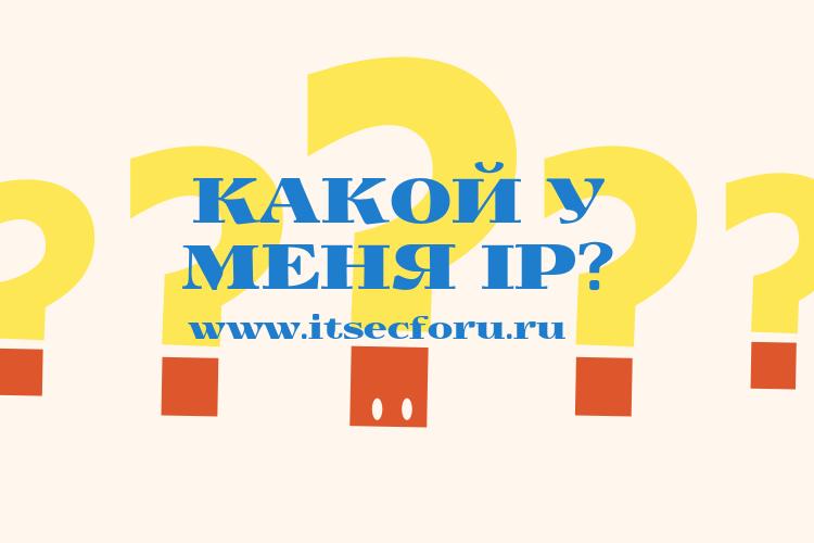 📋 Как создать свой собственный сервис What Is My IP
