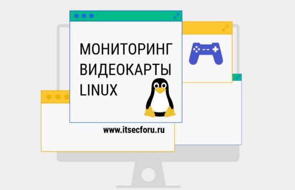🐧 Лучшие инструменты командной строки для мониторинга и диагностики графических процессоров Linux