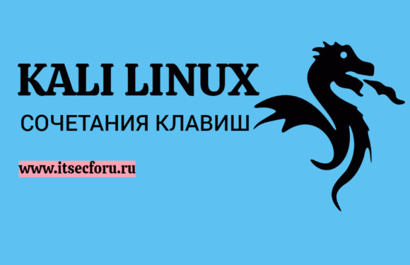 🐉 Шпаргалка по сочетаниям клавиш Kali Linux