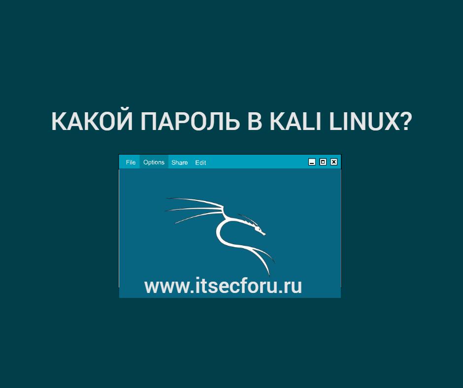 🐉 Пароль Kali Linux по умолчанию