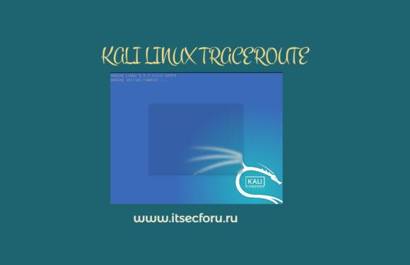 🐉 Как использовать traceroute на Kali Linux