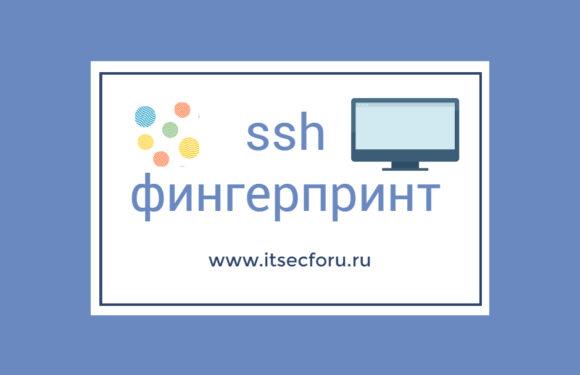🔐 Как автоматически принять отпечаток ключа ( фингерпринт ) SSH?