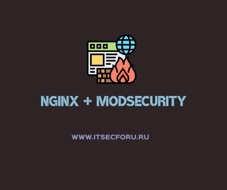 🌐 Как собрать NGINX с ModSecurity на Ubuntu сервере
