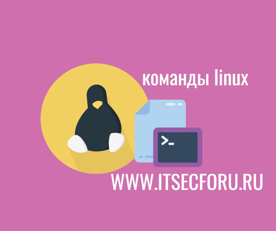🐧 20 команд мониторинга Linux, которые вы должны знать