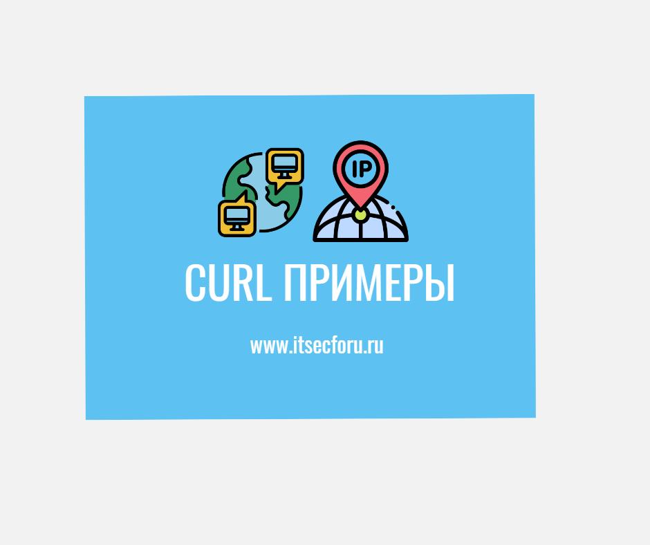 🖧 Как использовать curl для получения общедоступного IP-адреса