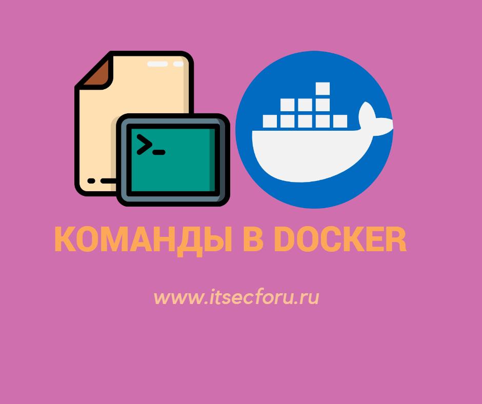 🐳 Как запускать команды внутри контейнера Docker?