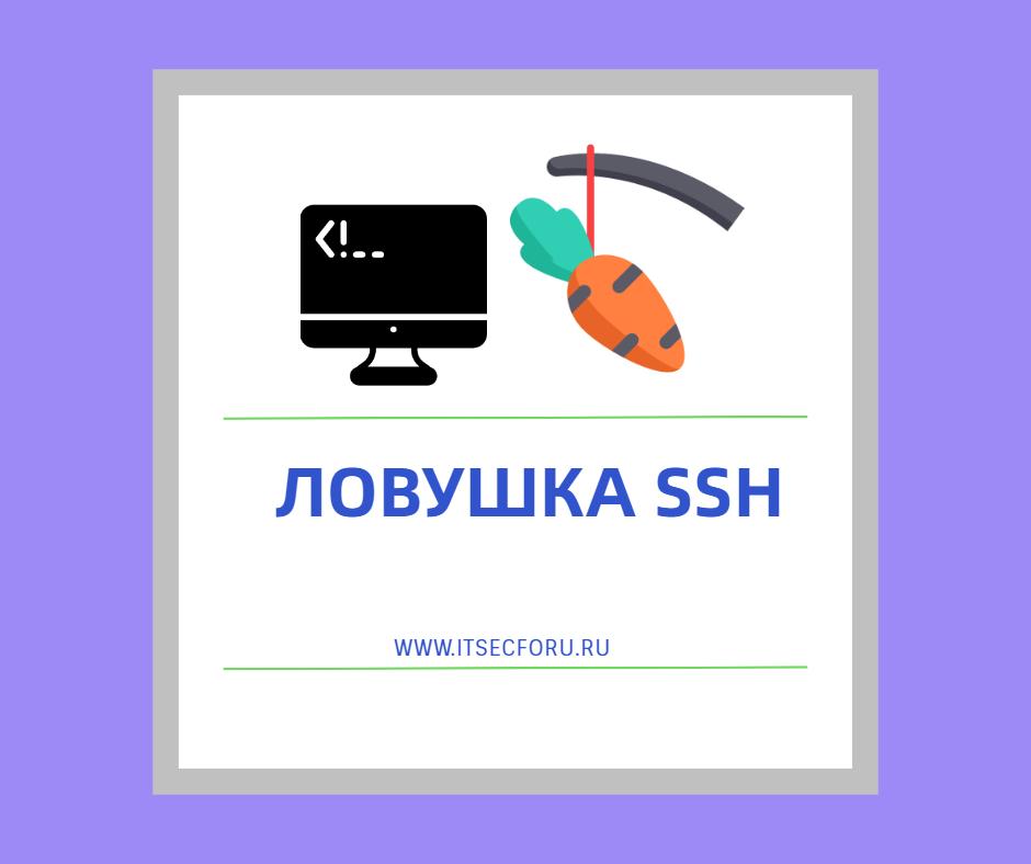 🔥 Как настроить SSH ловушку на Ubuntu сервере
