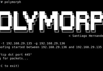 Манипуляции Сетевого Пакета в реальном времени: Polymoprh